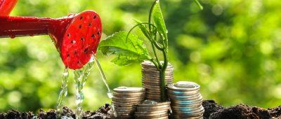 Investir avec la loi Pinel