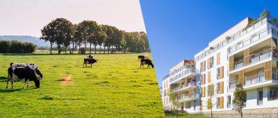 Immobilier résidentiel VS terres agricoles